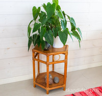 Rottinki kukkapöytä / sivupöytä