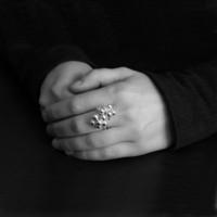 Hopeaterttu Helistin-sormus