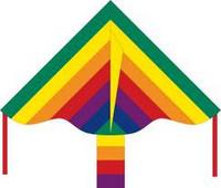 Simple Flyer Rainbow 85cm