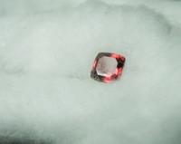 spinelli cushion. kirkas punainen