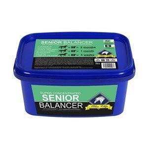 Blue Chip Super concentrated Senior Balancer