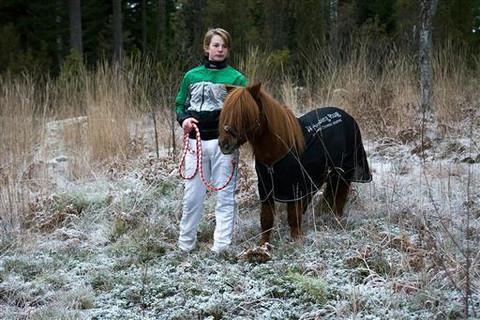 W-HEALING hoitava loimi poneille  (koko 95cm)