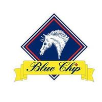 Blue Chip PRO 15kg