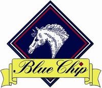 Blue Chip Garliq -Orgaaninen valkosipuli