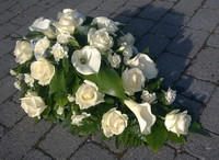 Valkoinen ruusu, kalla