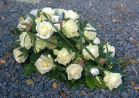 Valkoinen ruusu, maksaruoho