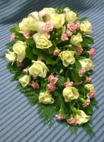 Valkoinen ruusu, oksaneilikka