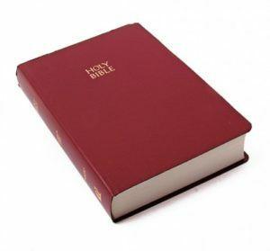 Raamattu, Holy Bible, NIV, viininpunainen