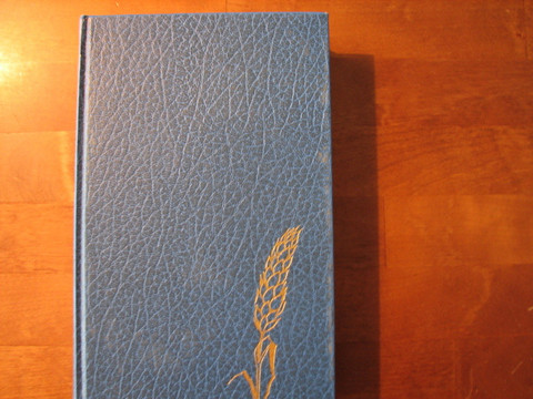 Nya Testamentet, Bibelkommissionens utgåva 1981, d2