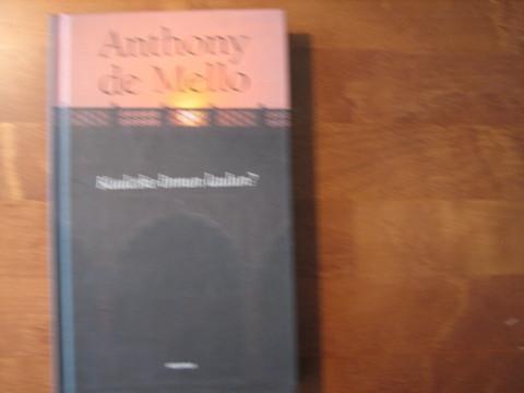 Kuuletko linnun laulun, Anthony de Mello