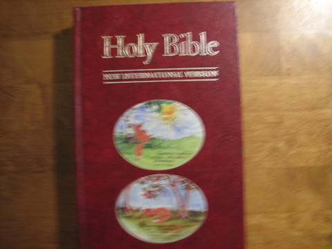 Holy Bible, New International Version, d3
