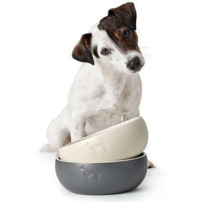 Ceramic bowl Lund - koiran ruokakuppi 350ml Luonnonvalkoinen