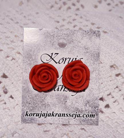 Punainen ruusunappikorvis