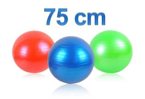 Jumppapallo+pumppu 75cm 8,90