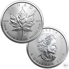 Kanada 5 $ 2019 Maple Leaf 1oz Ag