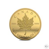 Kanada 2021 Maple Leaf kultakolikko 1g