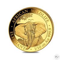 Somalia 2021 Elefantti 1/10z kultaraha