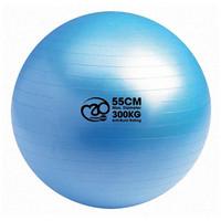 Fitness Mad - Fitnesspallo, 55 cm, 300 Kg + pumppu