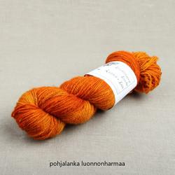 Louhitar II 'Porkkana'