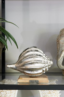 Riviera Maison Lipari Summer Shell Decoration