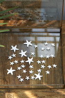 Riviera Maison Sea Star Vase Filler 36 pcs