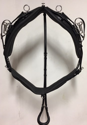 TWisted3D: Synthetic QH Training Harness Complete