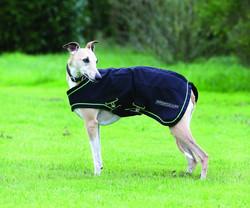 Sportz-Vibe koiran hierontaloimi
