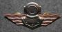 Finnish Navy Diver badge. 3rd class.