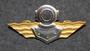 Finnish Navy Diver badge. 1st class.