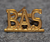 Bevaknings AB Securitas, BAS. Security officers insignia.