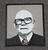 Presidentti Kekkonen, hihamerkki
