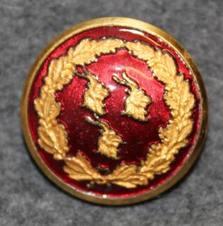Hudiksvalls kommun. Ruotsalainen kunta, 14mm kullattu, punainen emali