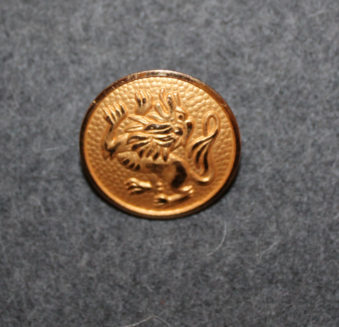 Leo, Zodiac Sign, 23mm