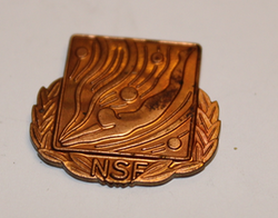 NSF pin without attachment.