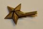 Sveitsiläinen arvomerkki. Tähti 18mm. Type 2