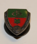 Richemond dailettes ( football club ) pin.
