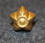Danish rank insignia ( gradstegn ), 5 pointed star, 15mm golden