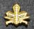 Finnish rank insignia, army academy student