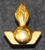 Ruotsalainen armeijan merkki.