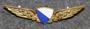 Siivet, Zürich lentokenttäpoliisi. v3