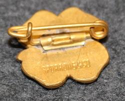 Föreningen Lüchokamratern