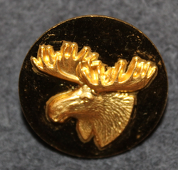Moosehead, swedish hunters association. 25mm, gilt