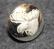Hirvenpää, ruotsin metsästäjäinliitto. 13mm, vanha malli