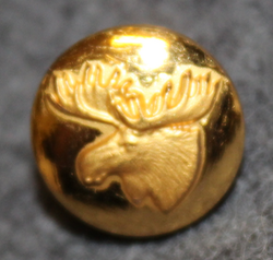 Moosehead, swedish hunters association. 13mm, old model, gilt