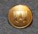 Västmanlands läns landsting, maakäräjät ( maakunta hallitus ), 20mm kullattu, lakkinappi