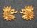 Ruotsin armeija, Etelä skånen rykmentti. Satiaiset