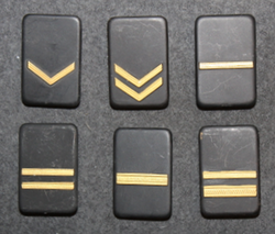 Securitas rank badges