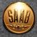 Saab, Svenska Aeroplan AB, car and airplane manufacturer, early type, 20mm