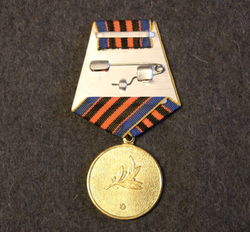 Ukraine: Defender of the Motherland Medal