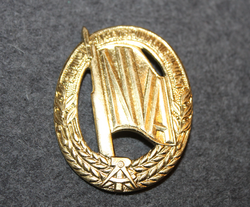 NVA Sports qualification badge. Gilt.
